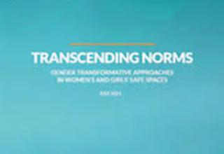 TRANSCENDING NORMS publication